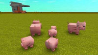 《迷你世界》猪怎么繁殖